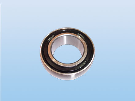 Round bore and spherical O.D. type