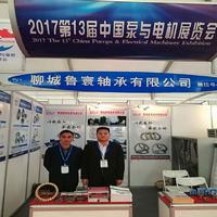 鲁寰轴承参加2017第十三届中国泵与电机展览会(秋季展)