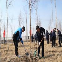 哈轴集团公司开展厂区义务植树活动【图】