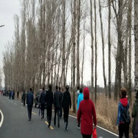 """""""阔步""""丈量古城最美的春天――瓦轴辽轴公司举办徒步大会"""