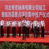 临西县隆重举行河北夸克轴承有限公司竣工暨重点项目集中投产仪式