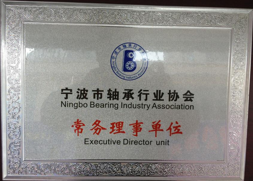 行业协会常务理事单位