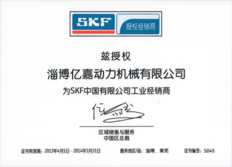 SKF2013授权