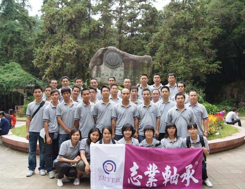 2011年公司惠