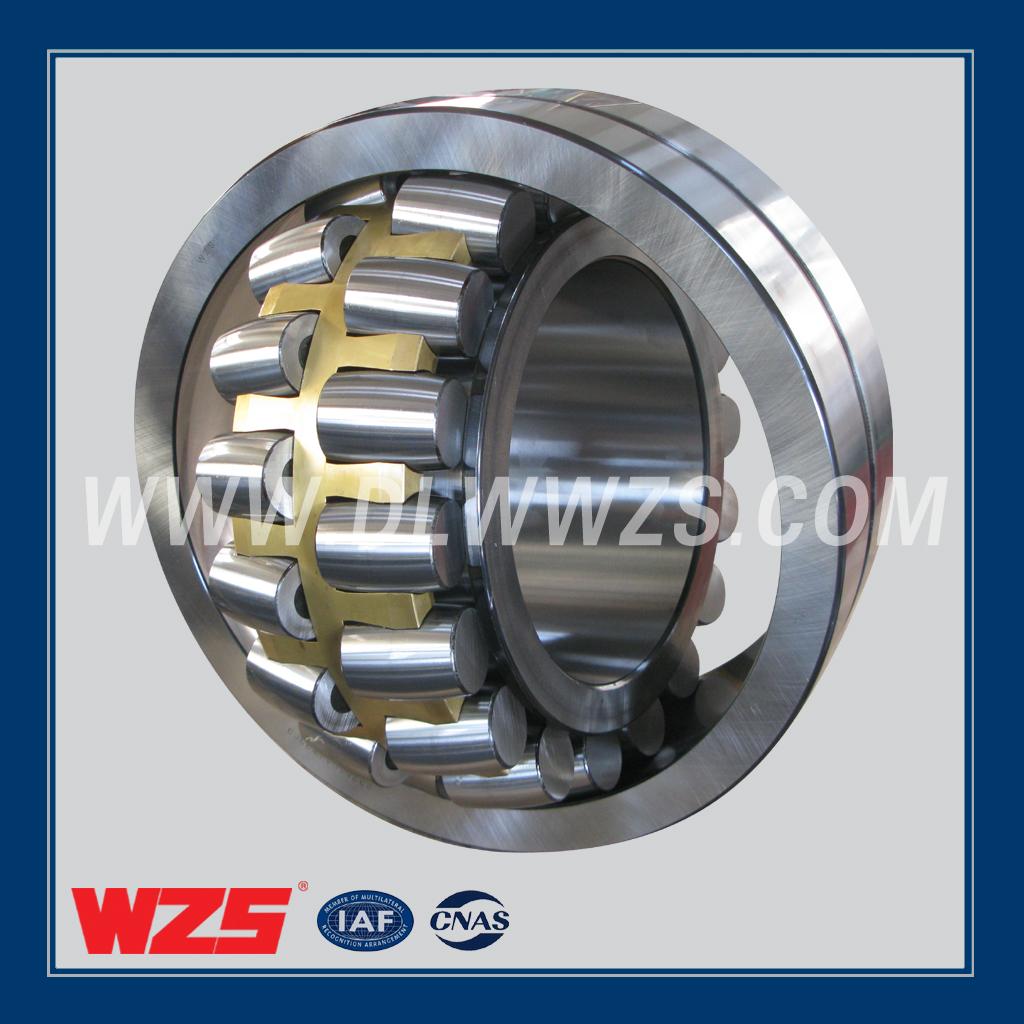 WZS轴承图片