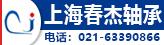 上海春杰轴承有限公司