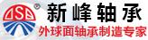 山东新峰轴承科技有限公司