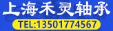 上海禾灵轴承有限公司