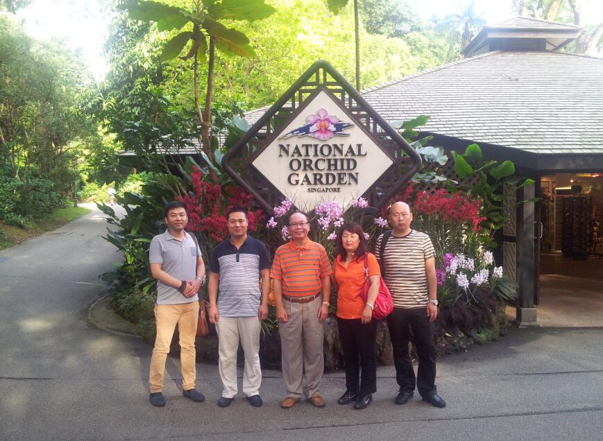 新加坡拜访客户