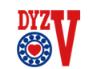 DYZV轴承样本